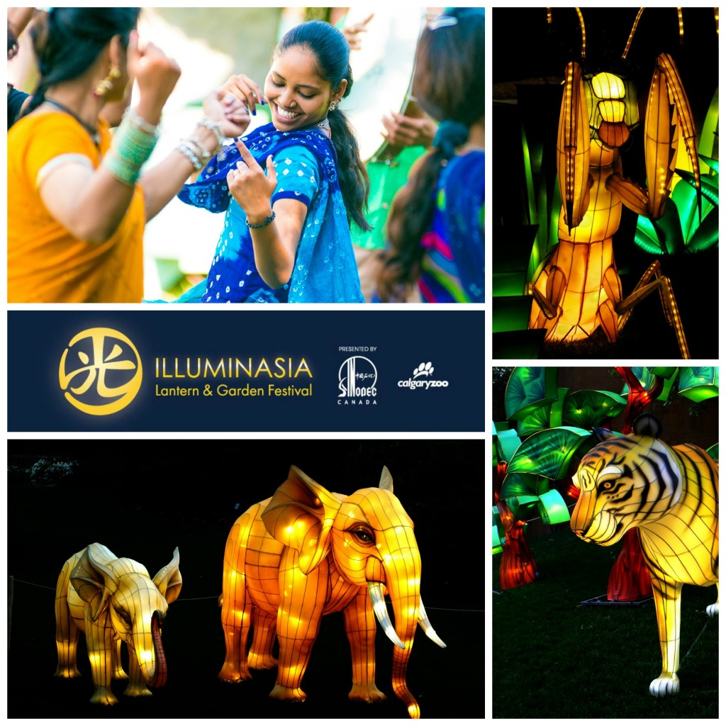 ILLUMINASIA India Programming