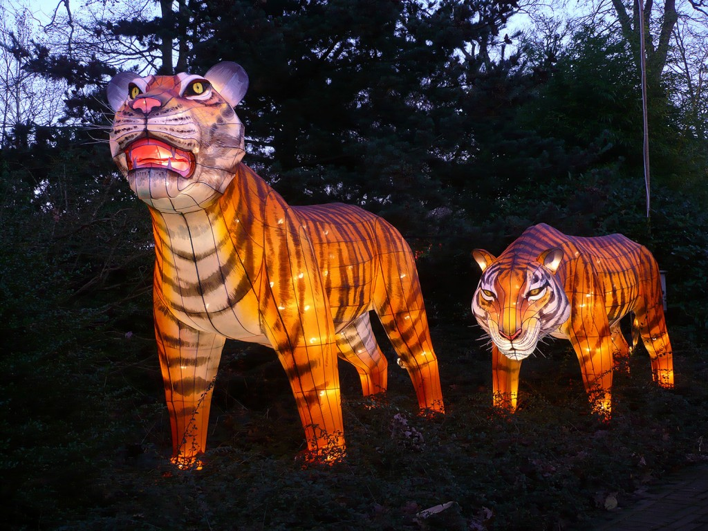 ILLUMINASIA Tiger Lantern