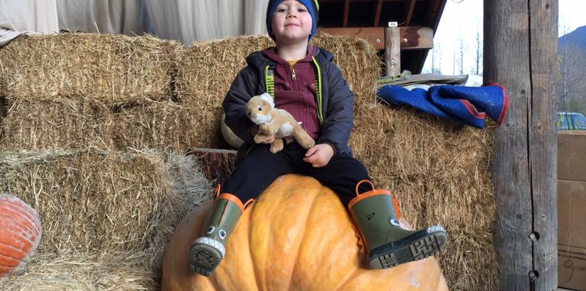 Jaxson and Baby Meow are together again. The pair of friends go to the pumpkin patch together.