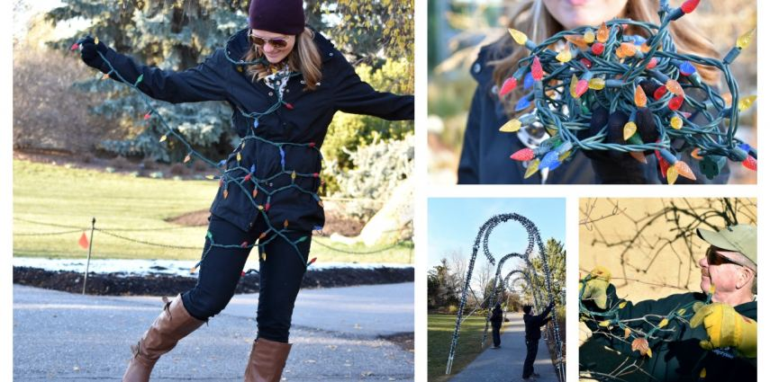 The Calgary Zoo team is getting ready for ZOOLIGHTS 2015!