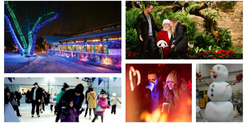 ZOOLIGHTS at the Calgary Zoo is the place to check out your top five holiday traditions.