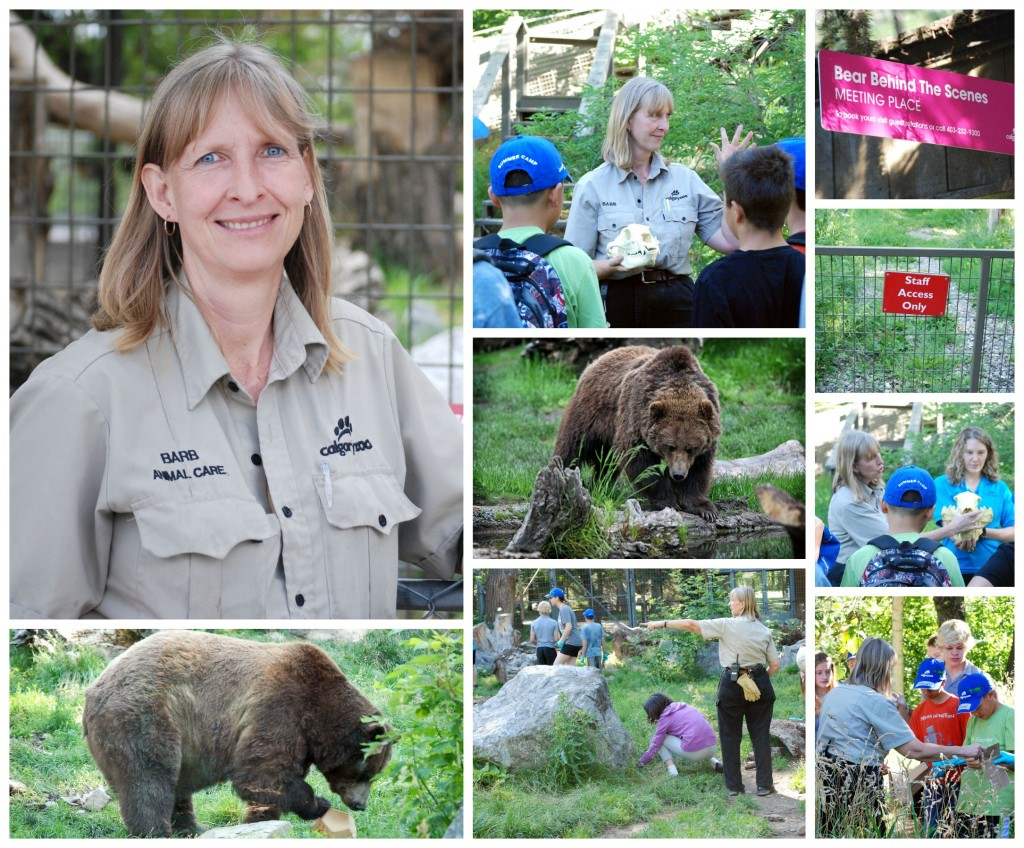 ZookeeperWeek2015-BarbCampbellCollage