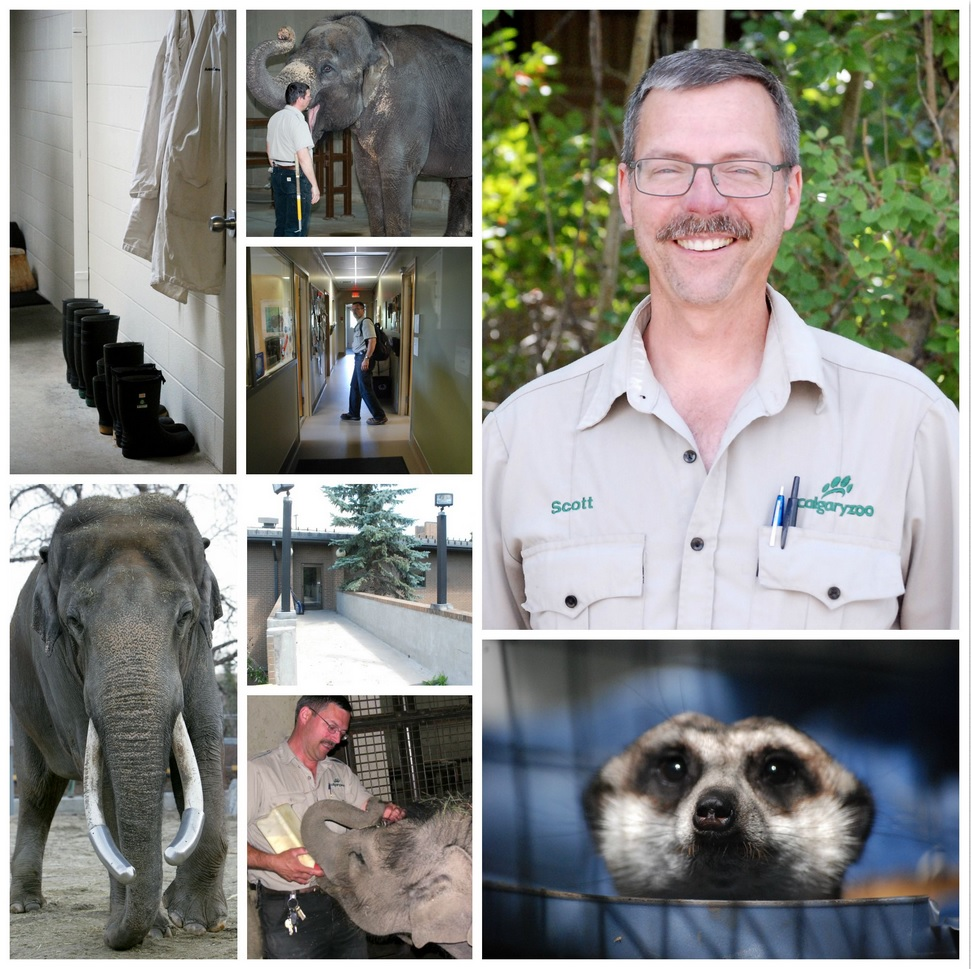ZookeeperWeek2015-ScottRussellCollage