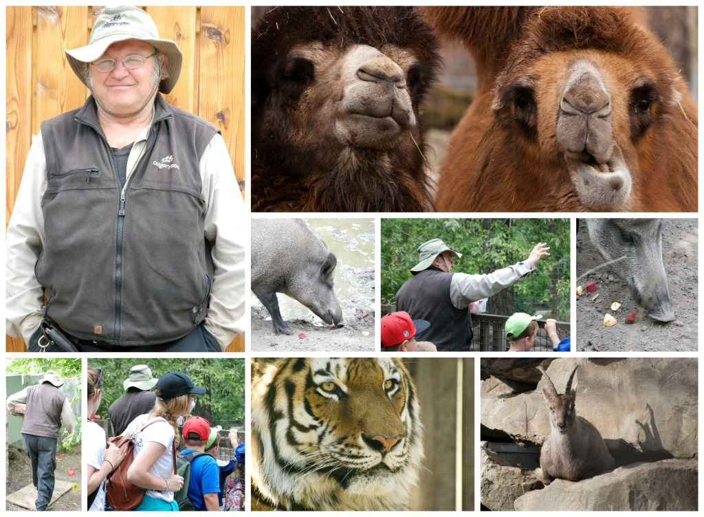 ZookeeperWeekLarryCollage