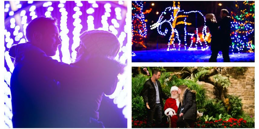 Take your sweetheart out for a classic winter date night at ZOOLIGHTS!