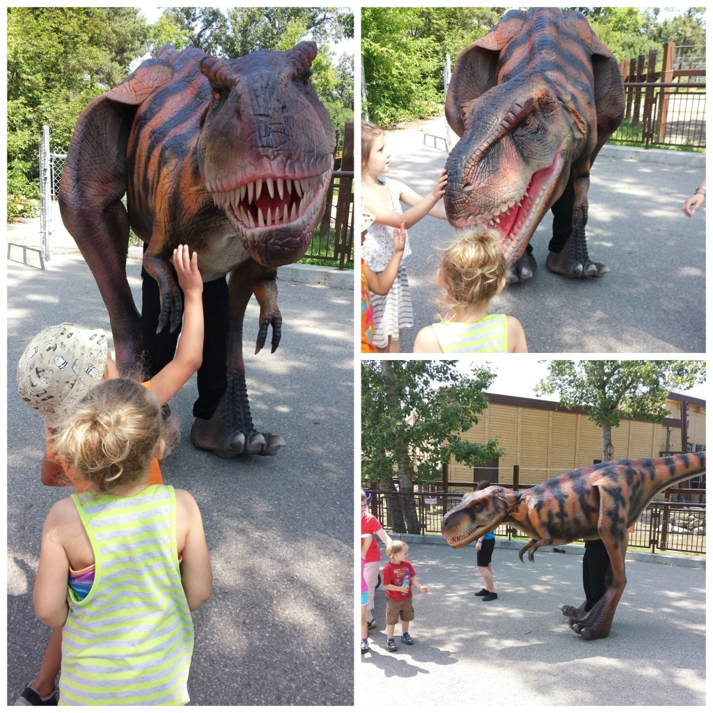 Rex takes a stroll through the zoo and meets our young visitors. Keep an eye out for him during our Dino Talks in the Prehistoric Park Amphitheatre!