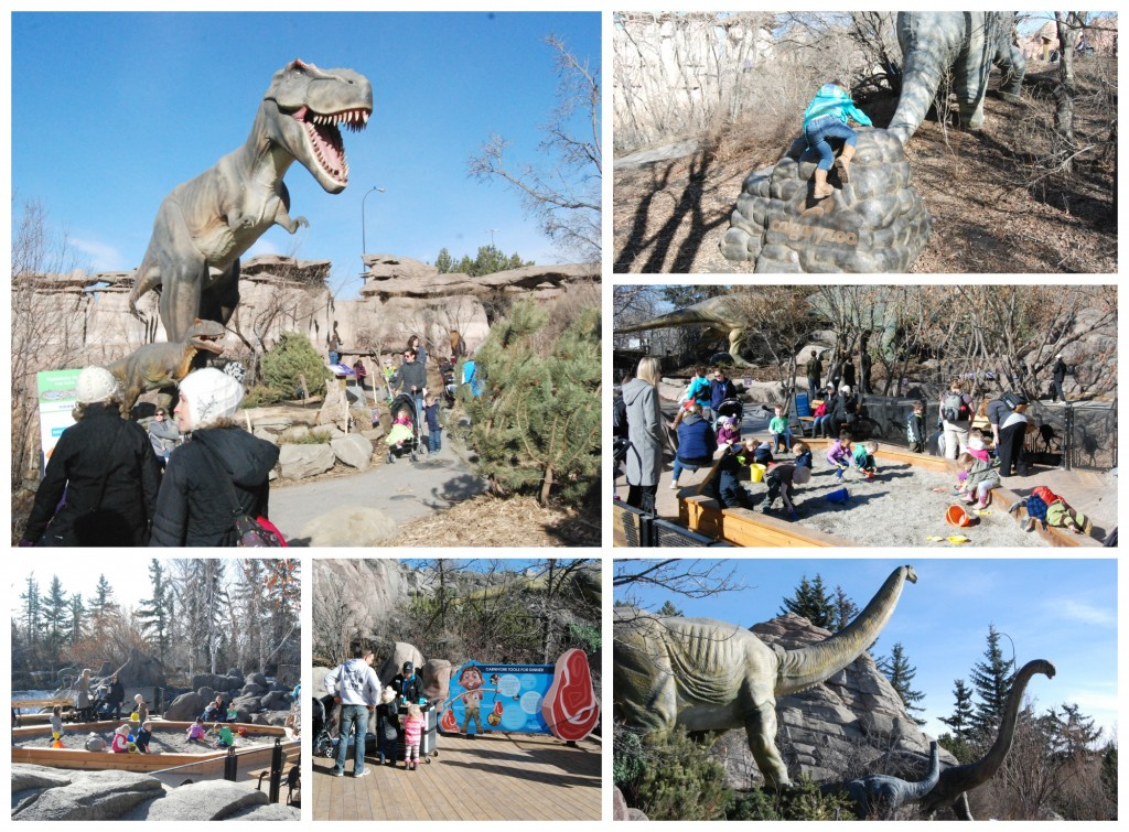 When we brought back Dinosaurs Alive in 2015, we introduced many new additions. We can't wait to add more!