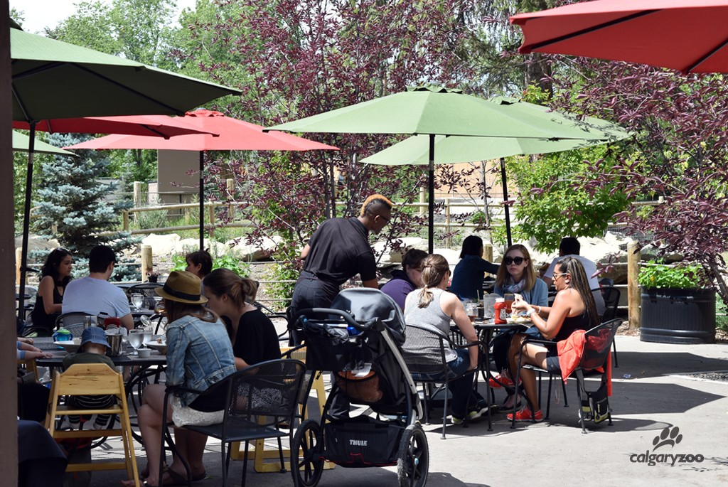 Join us on the patio for a drink! Families and adult beverages available.