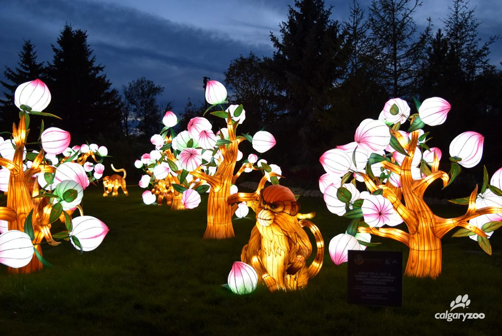 Favourite lanterns from the 2015 show return, along with many new additions.