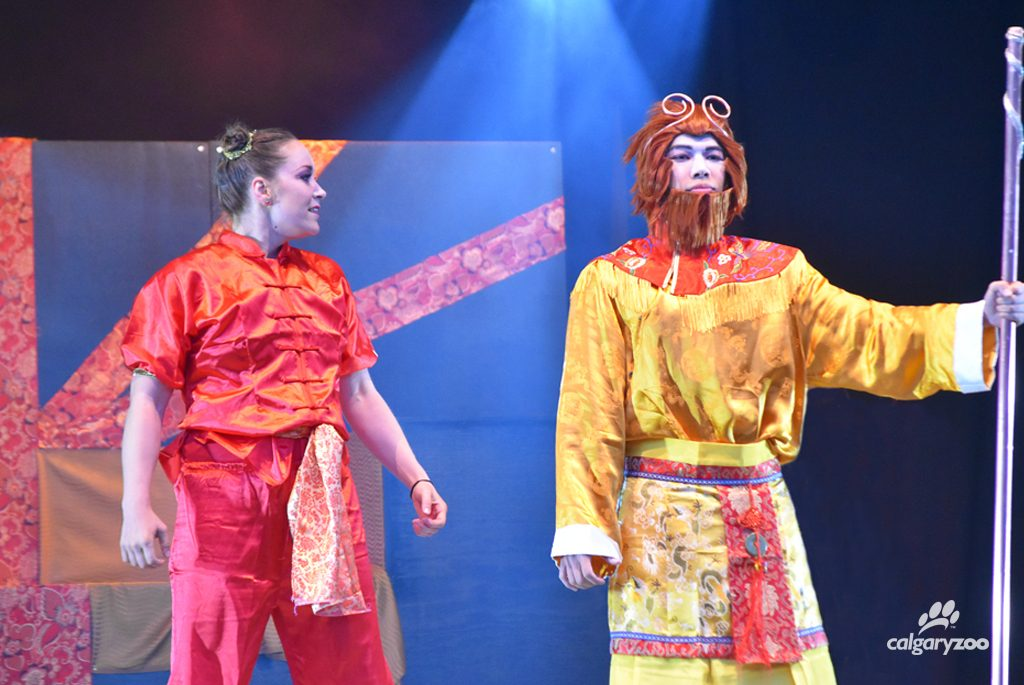 This year ILLUMINASIA is offering an original stage show twice a night- the The Journey of the Monkey Princess!