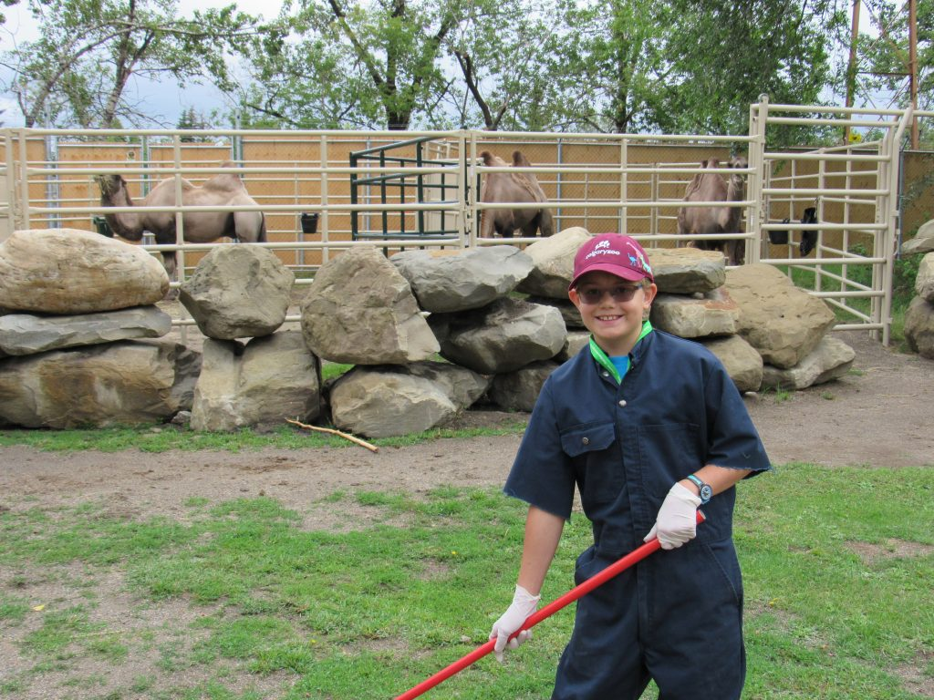 Zoo summer camp goer experiencing what it is like to be a keeper.