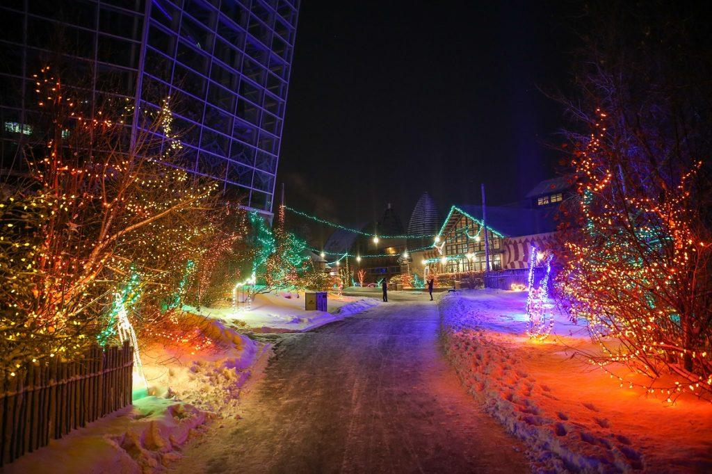 'Tis the season! See a dazzling 1.5 million LED light bulbs! Photo credit: Sergei Belski