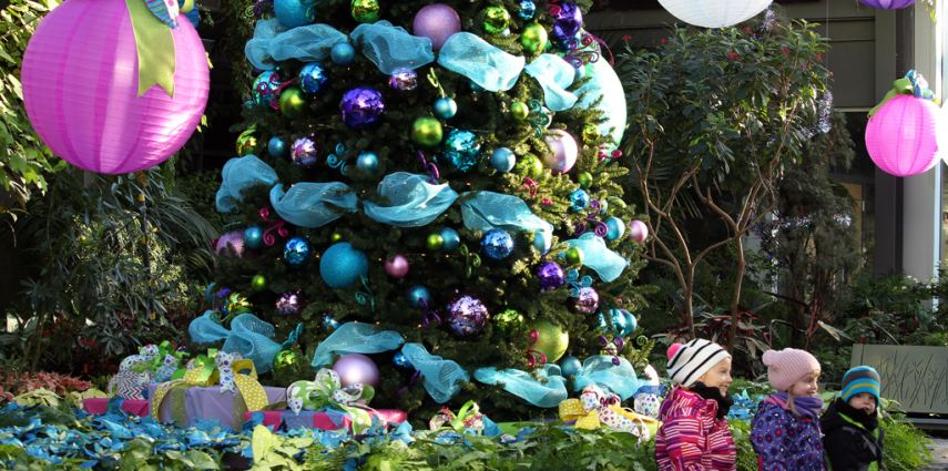 The Christmas tree in the main Garden Gallery is a sight to see this year!