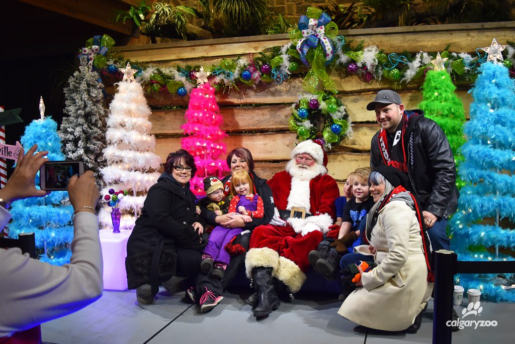 No ZOOLIGHTS visit is complete without a visit to Santa! Young or old, this photo op is a classic.
