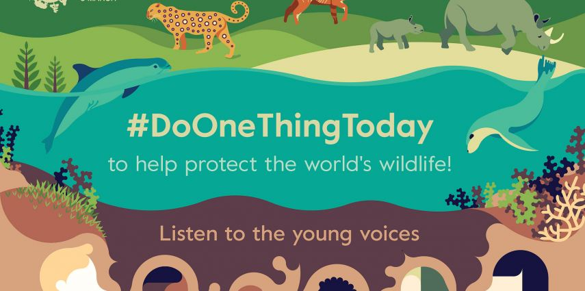 It's World Wildlife Day this March 3!!
