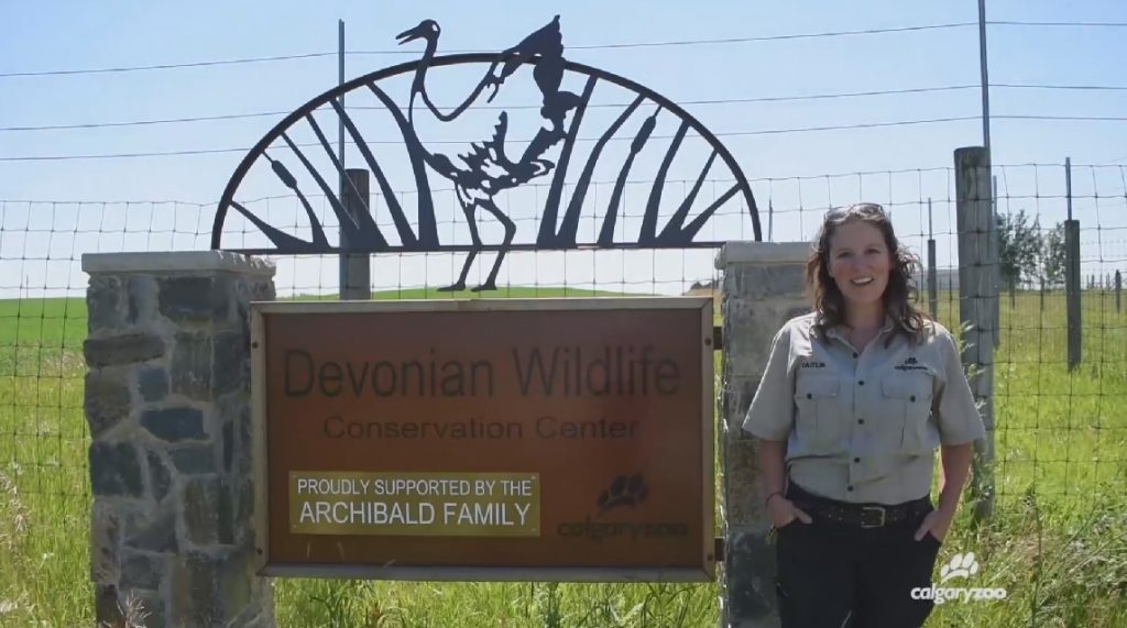 Meet the keeper: Caitlin Vavasour-Williams.