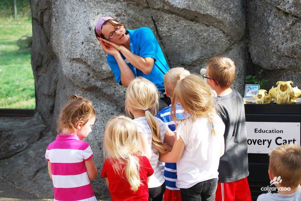 Each day the zoo features FREE daily programming.