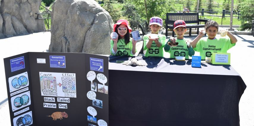 The Grade One students of Colonel Sanders School become young conservationists to educate zoo visitors.