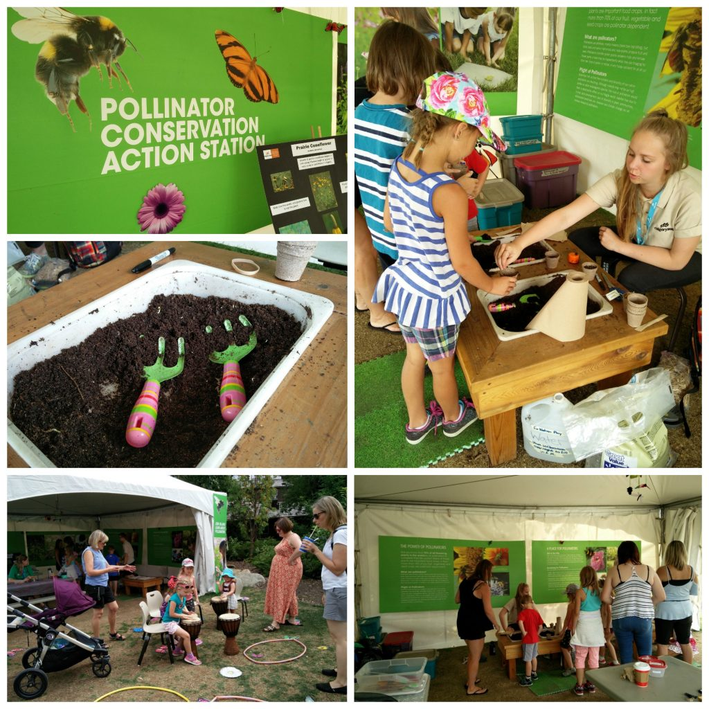 The Calgary Zoo featured Conservation Action tents in Summer 2017. Visitors could learn all about pollinators.