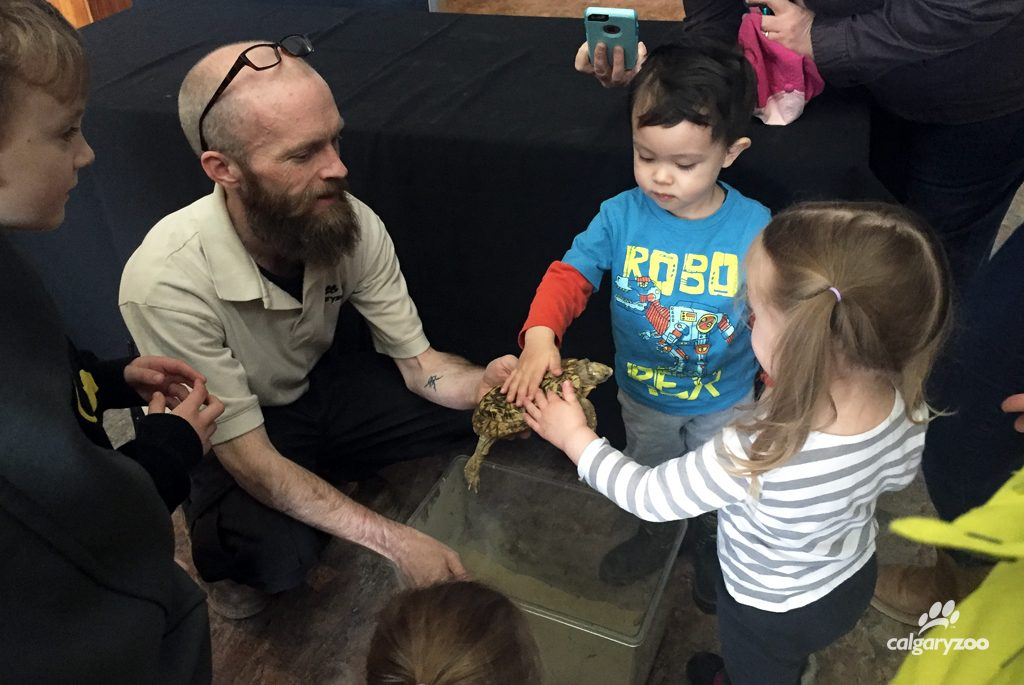 Enjoy a personal animal encounter during our daily Creature Feature program.
