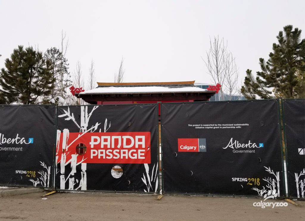 The current hoarding for Panda Passage at the Calgary Zoo, and the welcome gate just beyond.