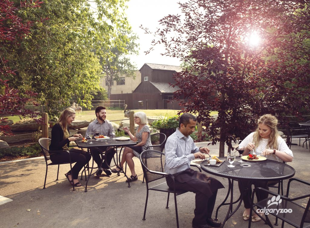 Relax with a delicious meal (and a drink!) on the patio at Grazers restaurant.