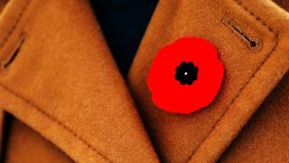 Poppy on Coat