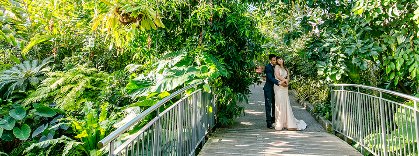 Calgary Zoo Wedding