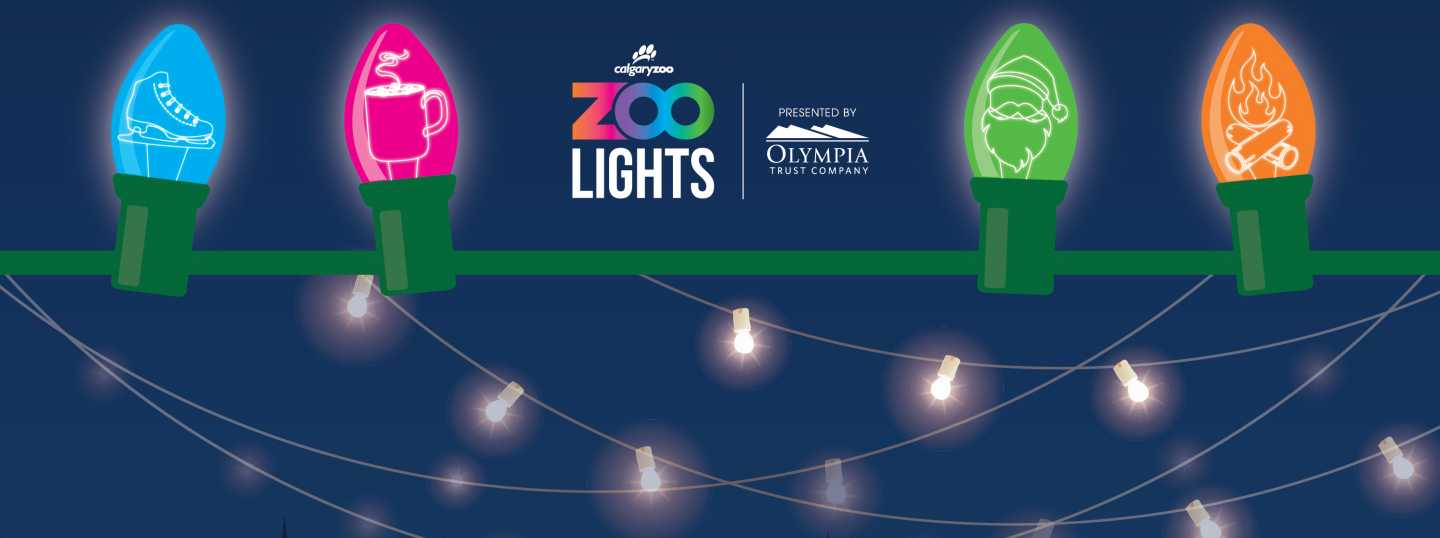 ZOOLIGHTS banner