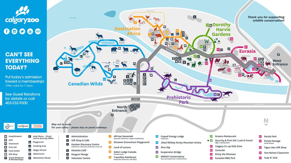 Calgary Zoo Map Find Animals Attractions More